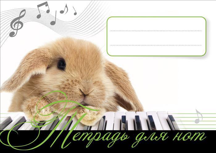 Тетрадь для нот. Зайчонок