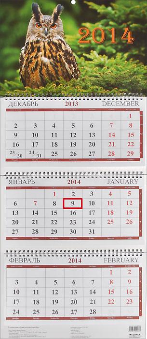 Календарь 2014 (на спирали). Сова