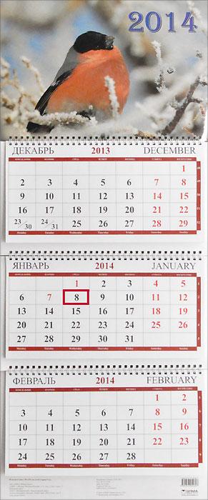 Календарь 2014 (на спирали). Снегирь