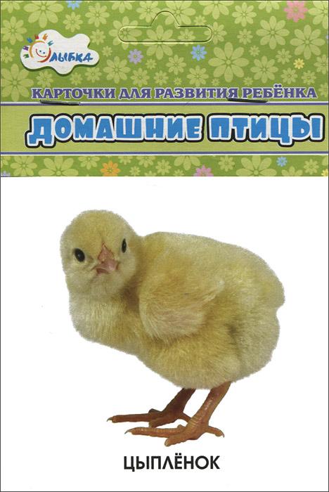 Домашние птицы (набор из 12 карточек)