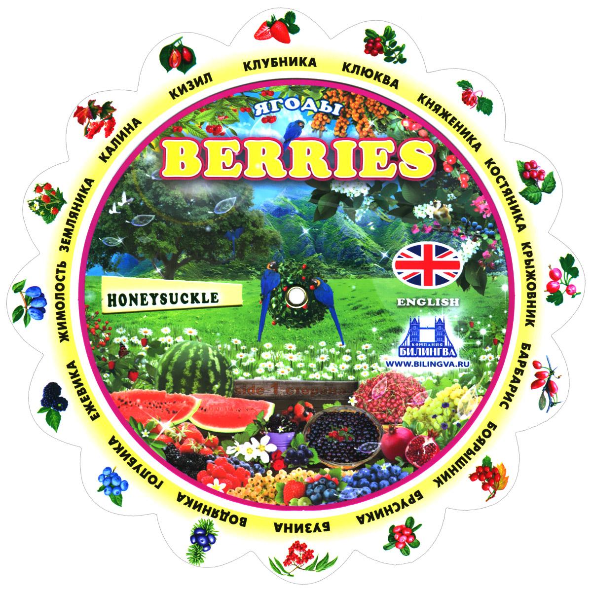 Berries / Ягоды. Тематический словарь ( 978-5-9797-0037-3 )