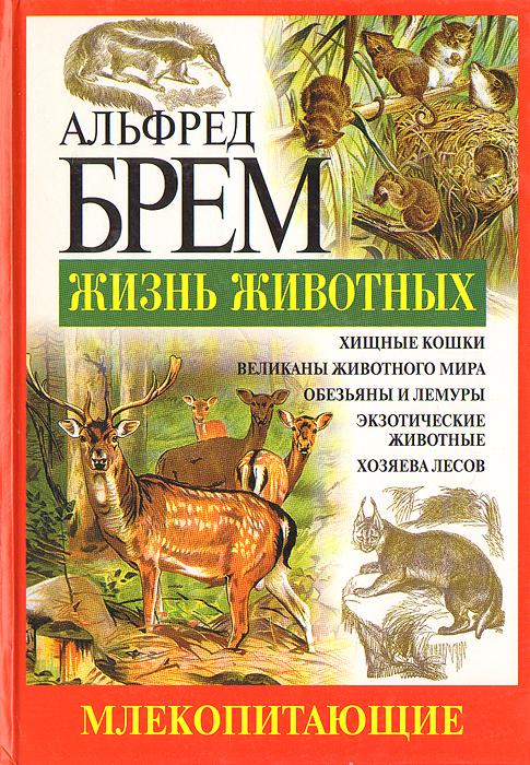 Товары mail ru