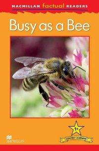 Macmillan Factual Readers: Level 1+: Busy as a Bee