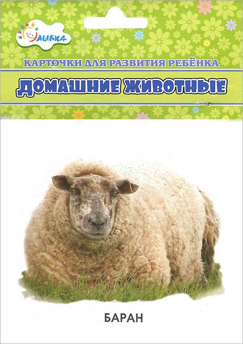 Домашние животные (набор из 12 карточек)