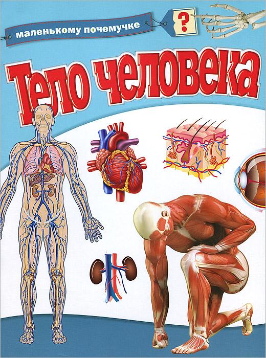 Тело человека ( 978-5-17-082646-9 )