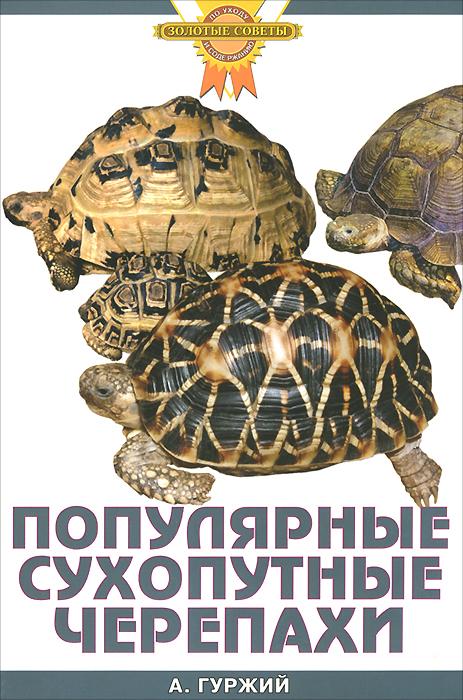 Популярные сухопутные черепахи