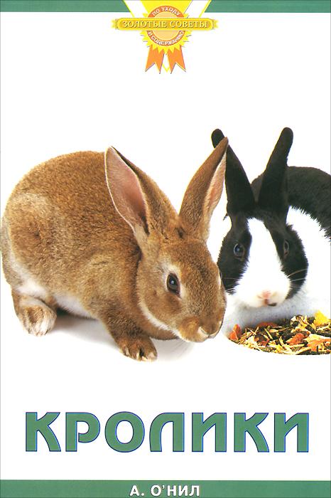 Кролики ( 978-5-98435-900-9, 978-985-16-4659-9, 978-1-84286-092-2 )
