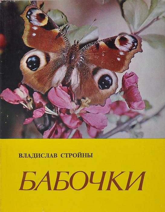 Бабочки12296407Мир насекомых сказочно богат, но нам прежде всего бросаются в глаза бабочки, обитающие в полях и садах, на лугах и в лесах - и даже в жилых постройках. Взрослые особи привлекают к себе внимание богатством формы и цвета, а личинки - вредом, который они наносят сельскохозяйственным растениям. Бабочки обычно приводят нам на мысль цветущий луг, пестрый, как их крылья. Это, однако, не полная картина, так как многие виды - мелкие и невзрачные, блеклые, ведущие ночной образ жизни - не поражают наблюдателя своей красотой, но их жизнь и роль, которую они играют в природе и в человеческом хозяйстве, всегда достойны внимания.