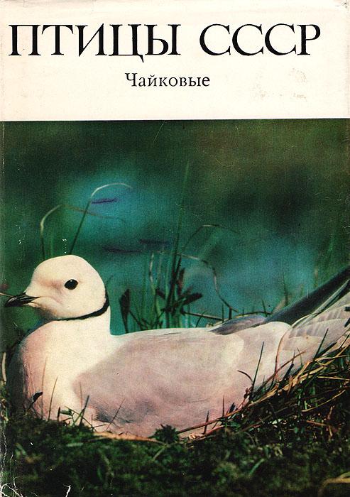 Птицы СССР. Чайковые