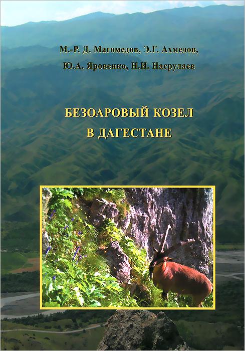 Безоаровый козел в Дагестане