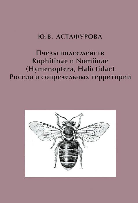 ����� ����������� Rophitinae � Nomiinae (Hymenoptera, Halictidae) ������ � ������������ ����������