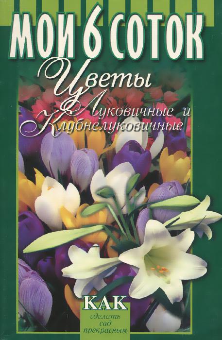 Цветы луковичные и клубнелуковичные