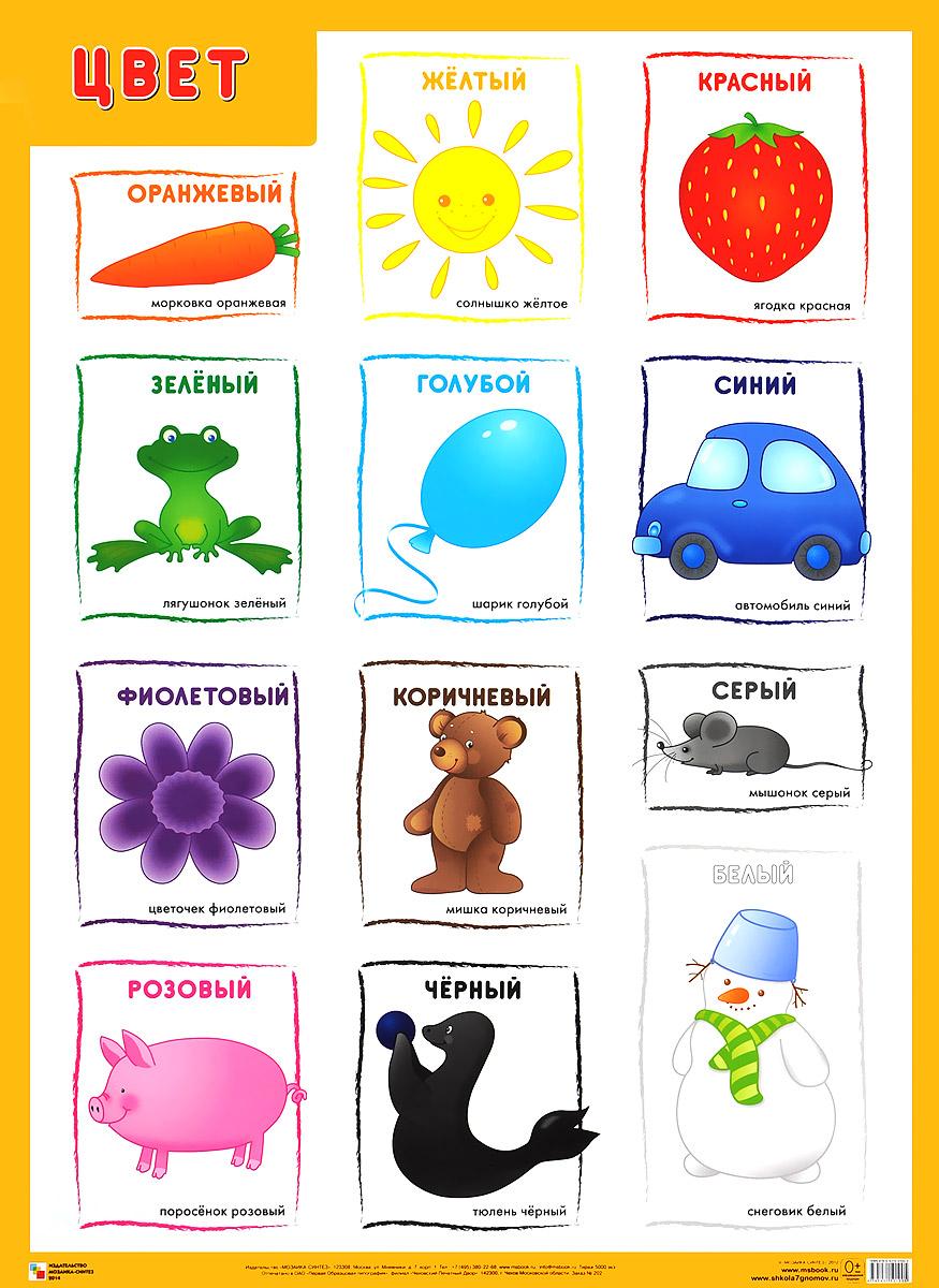 Цвет. Плакат ( 978-5-43150-100-5 )