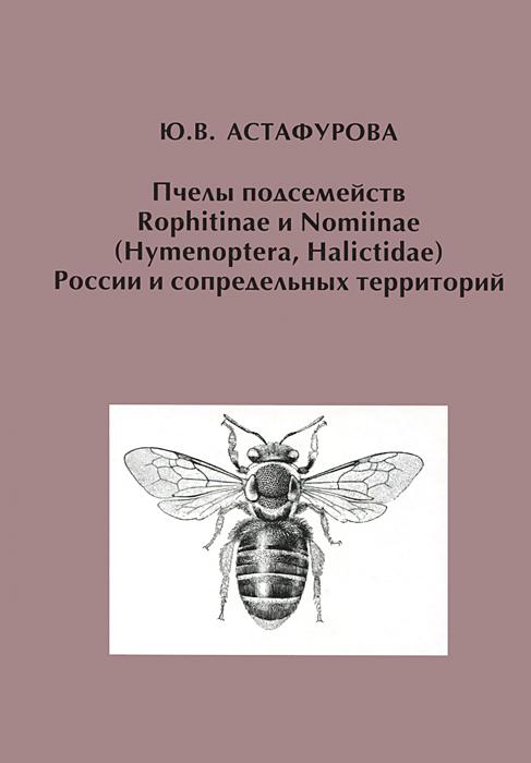 Пчелы подсемейств Rophitinae и Nomiinae (Hymenoptera, Halictidae) России и сопредельных территорий