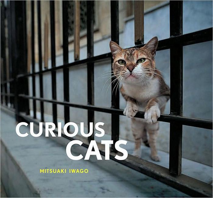 Curious Cats ( 978-0-8118-7004-7 )