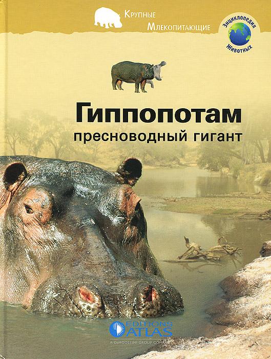 Гиппопотам. Пресноводный гигант12296407В африканских реках и озерах обитает крупное животное, которое не мыслит свою жизнь без прохлады воды. Это гиппопотам. Но кто же на самом деле это животное? В какое время суток оно питается? Что ест? Живет ли гиппопотам один или в группе? Как рождаются малыши? Как они учатся плавать? Много ли видов гиппопотамов? В книге Гиппопотам: пресноводный гигант вы найдете ответы на эти и на многие другие вопросы. В ней также рассказывается о жизни этого животного в центре африканского континента, которому все больше и больше угрожает засуха.