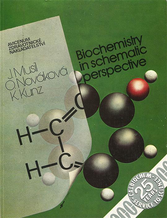 Biochemisty in Schemalic Perspective