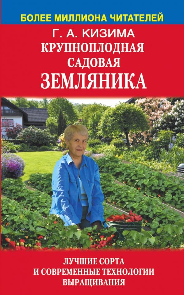 Крупноплодная садовая земляника: лучшие сорта и современные технологии выращивания