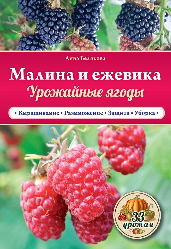 Малина и ежевика. Урожайные ягоды