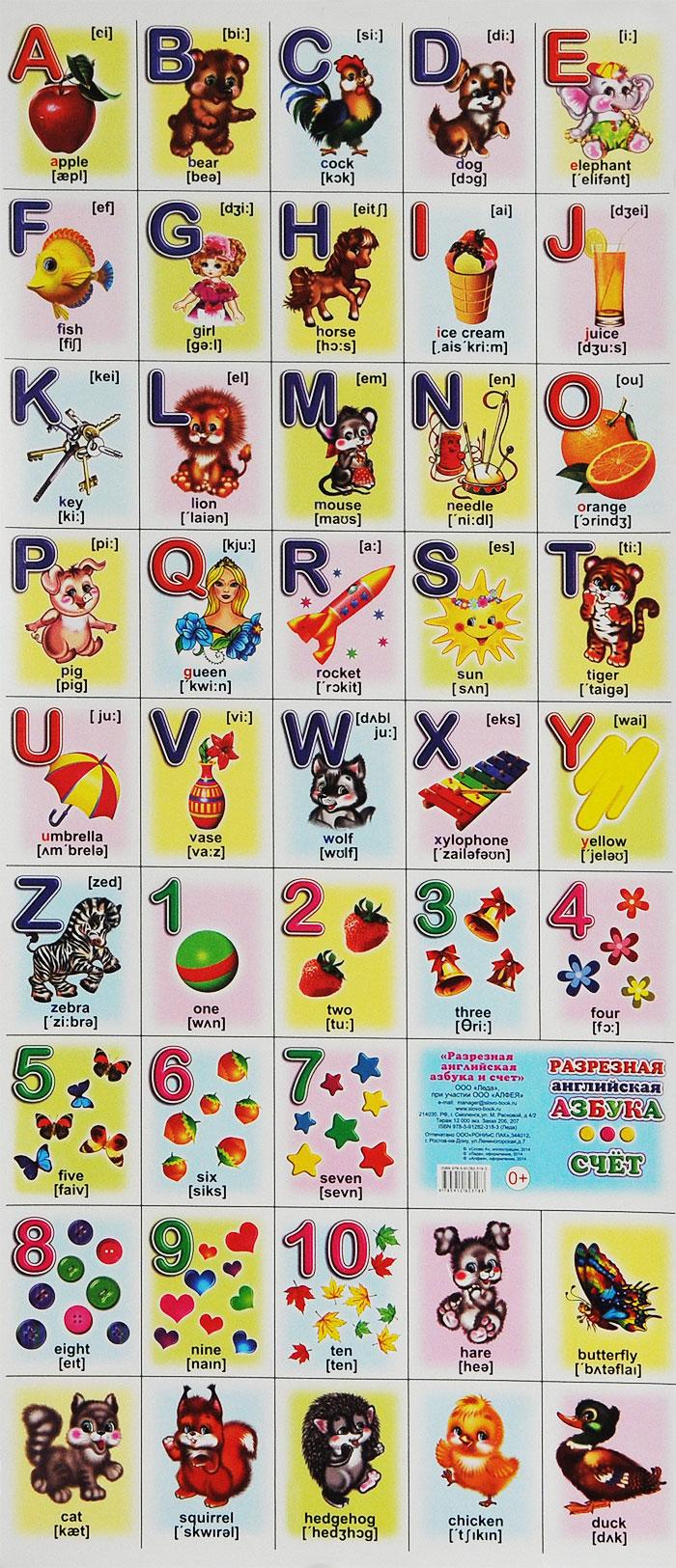 Разрезная английская азбука и счет. Плакат