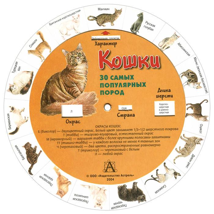 Кошки. 30 самых популярных пород