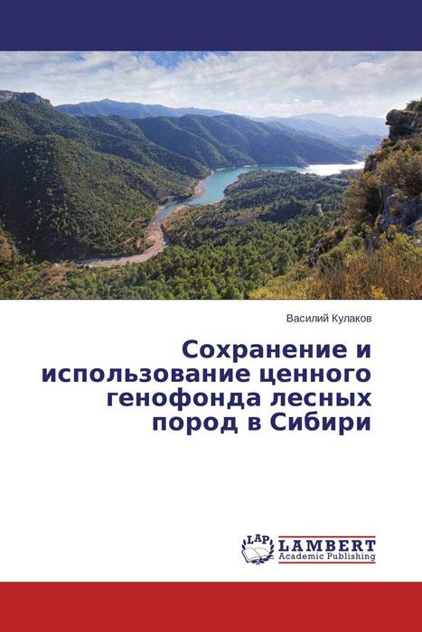 Сохранение и использование ценного генофонда лесных пород в Сибири