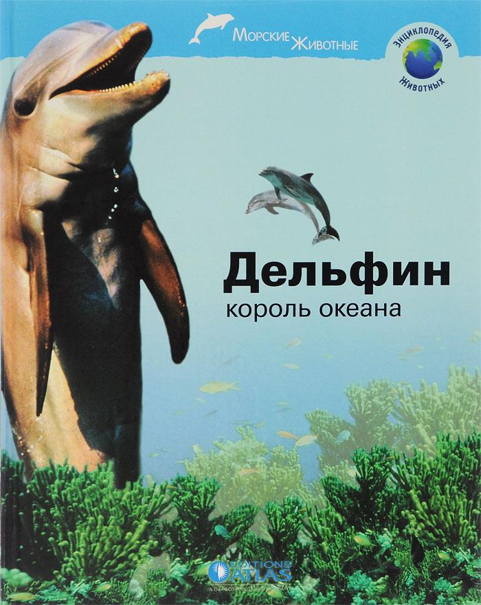 Дельфин - король океана