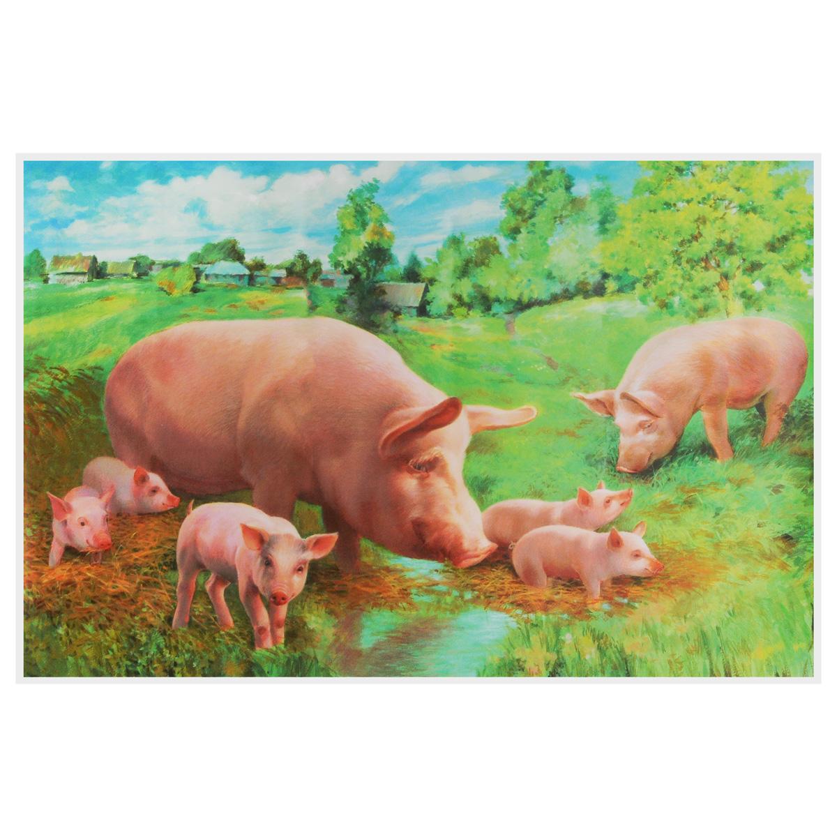 Свинья с поросятами. Плакат12296407Этот плакат познакомит вашего малыша с домашними животными. Красочные иллюстрации помогут ребёнку легко и быстро, в процессе игры, изучить и запомнить названия животных, их повадки и привычки. По сюжету плаката можно придумать увлекательную историю, что способствует развитию речи, воображения, мышления.