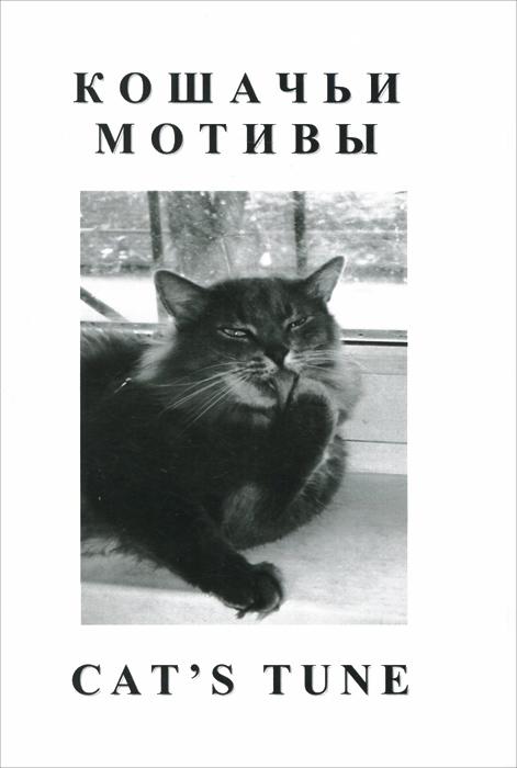 Кошачьи мотивы / Cat's Tune