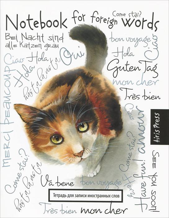 Любопытная кошка. Тетрадь для записи иностранных слов