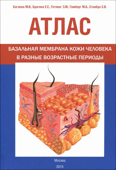 Атлас. Базальная мембрана кожи человека в разные возрастные периоды
