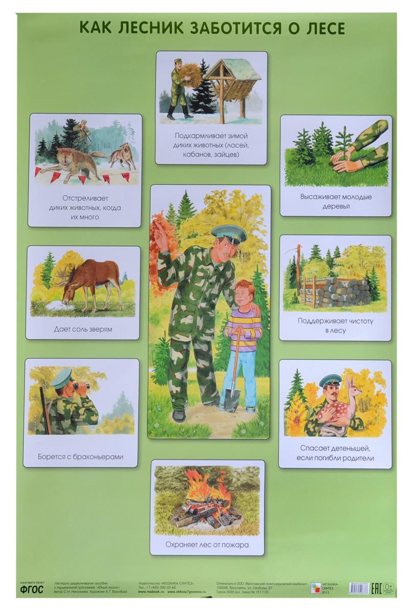 Как лесник заботится о лесе. Плакат ( 978-5-43150-637-6 )