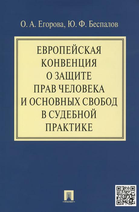 Европейская конвенция о защите прав человека и основных свобод в судебной практике ( 978-5-392-19008-9 )