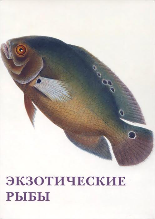 Экзотические рыбы (набор из 15 открыток)