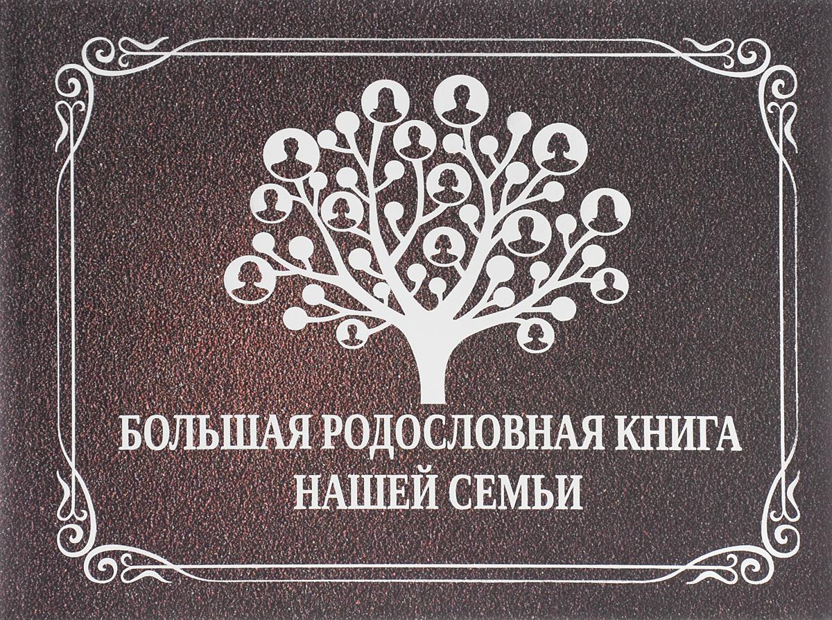 Большая родословная книга нашей семьи ( 978-5-17-093388-4 )