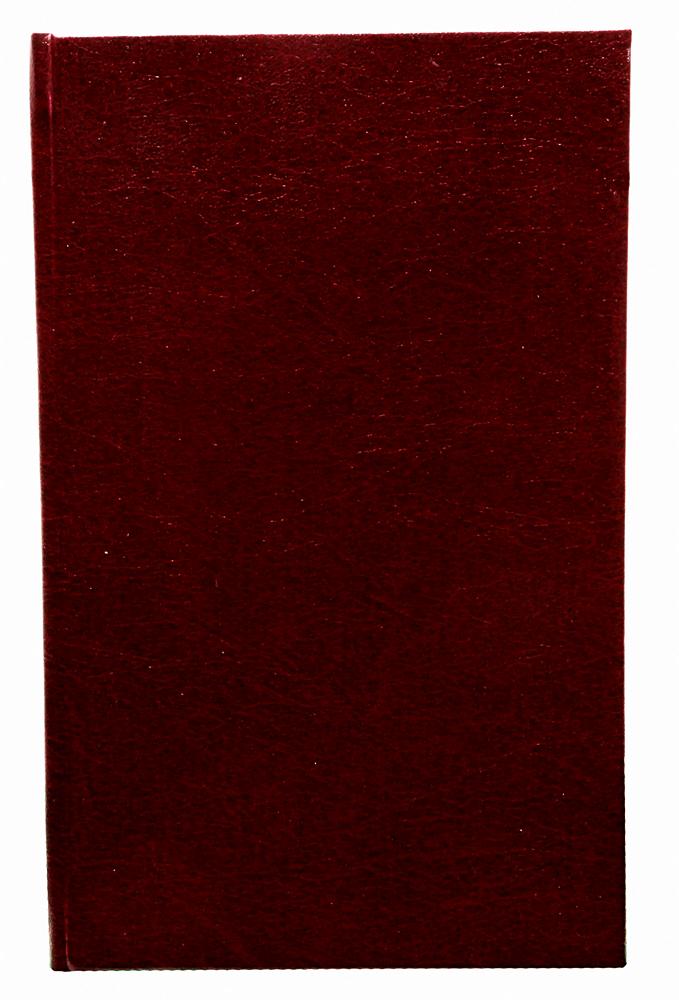 Фридрих Ницше. Собрание сочинений. Том VII. Странник и его тень. Стихотворения