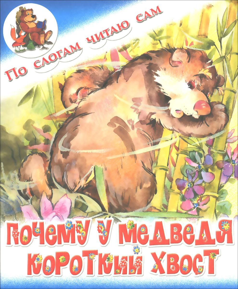 Почему у медведя короткий хвост