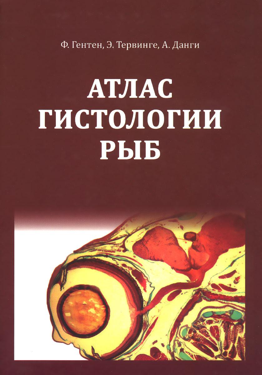 Атлас гистологии рыб. Учебное пособие