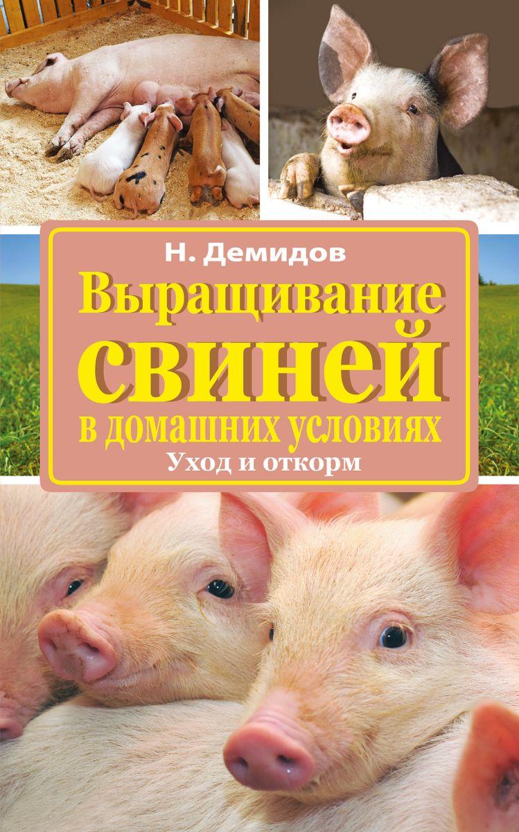 Свинья уход в домашних условиях