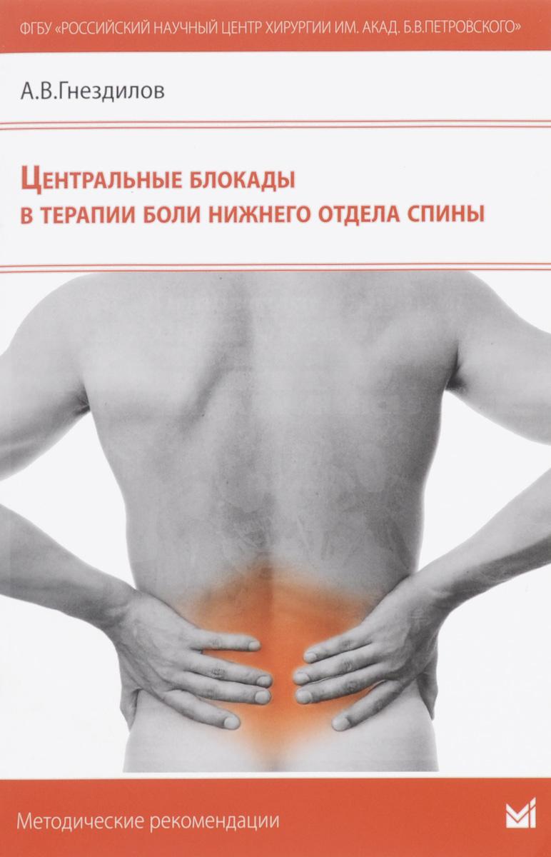 Центральные блокады в терапии боли нижнего отдела спины ( 978-5-00030-229-3 )