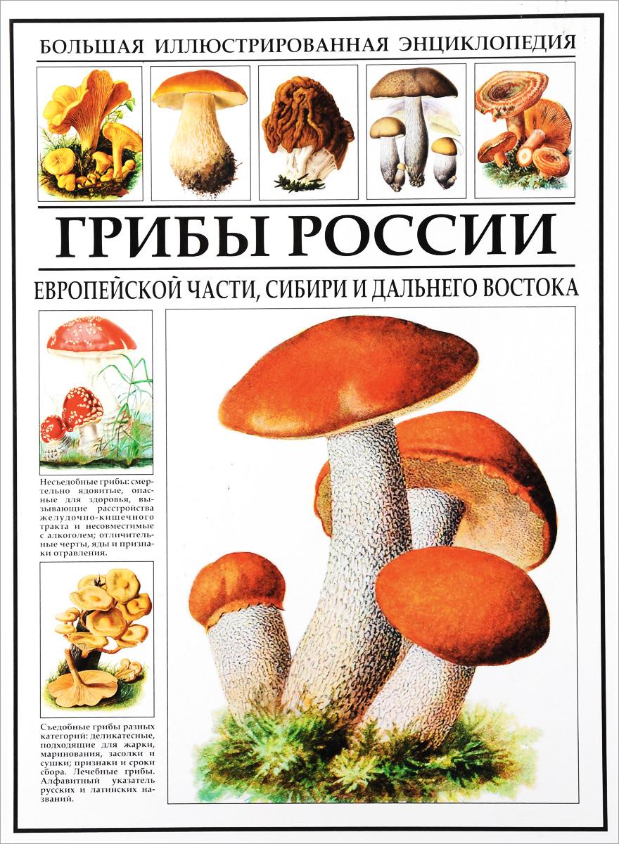 Большая иллюстрированная энциклопедия. Грибы России