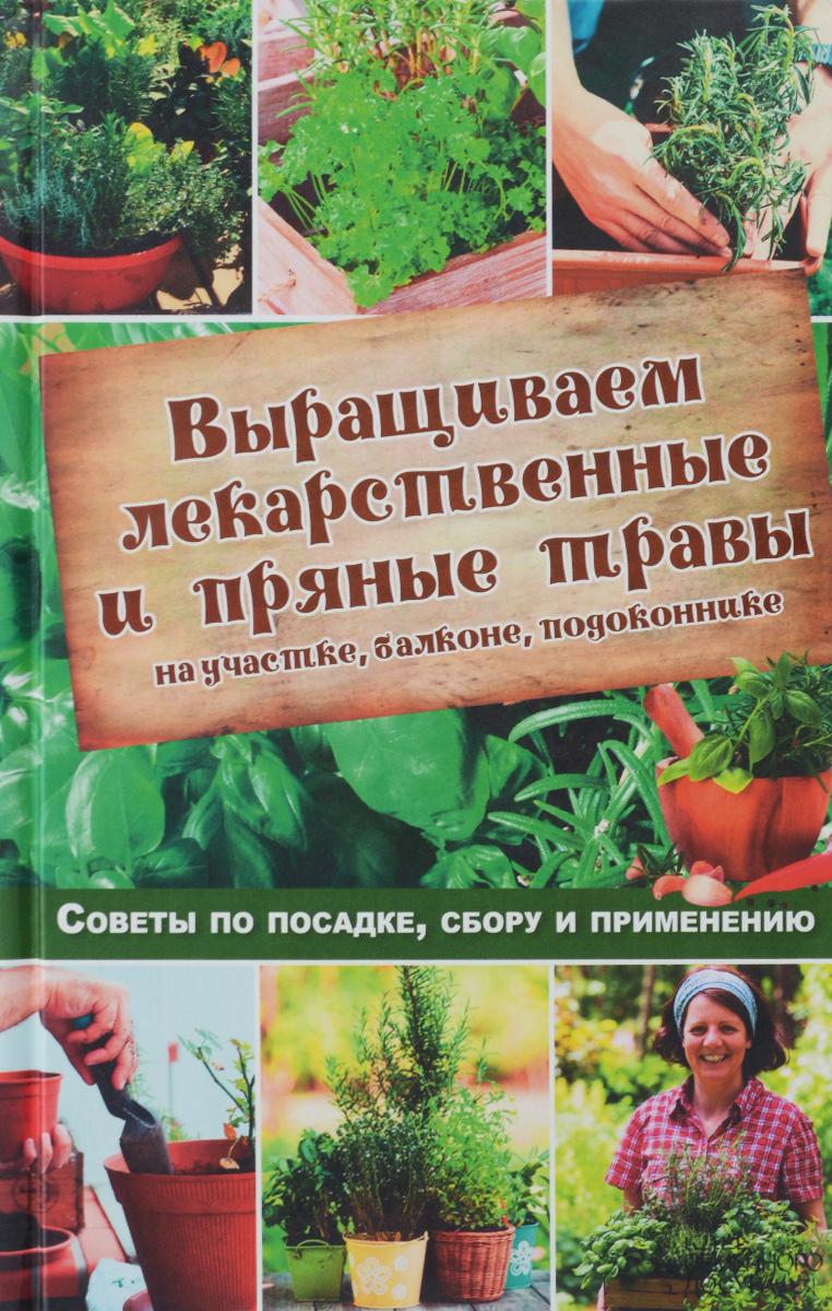 Выращиваем лекарственные и пряные травы на участке, балконе, подоконнике