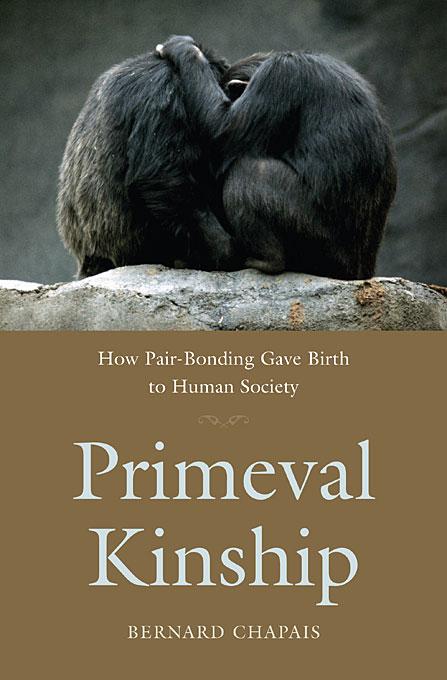 Primeval Kinship – How Pair–Bonding Gave Birth to Human Society