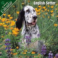 English Setter 2007 Wall Calendar