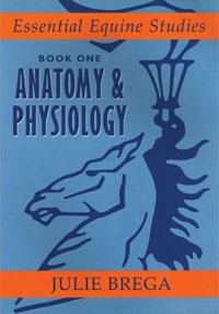 Anatomy and Physiology: Book 1 Anatomy & Physiology