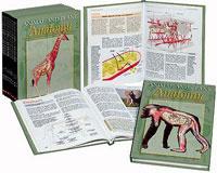 Animal and Plant Anatomy