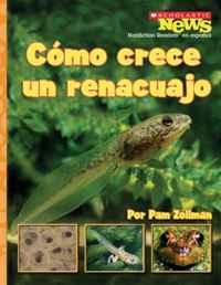 Como Crece un Renacuajo/ A Tadpole Grows Up (Scholastic News Nonfiction Readers En Espanol)