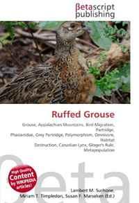 Ruffed Grouse: Grouse, Appalachian Mountains, Bird Migration, Partridge, Phasianidae, Grey Partridge, Polymorphism, Omnivore, Habitat Destruction, Canadian Lynx, Gloger's Rule, Metapopulation
