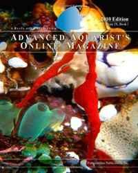 Advanced Aquarist's Online Magazine, Volume IX, Book I: 2010 Edition (Volume 11)