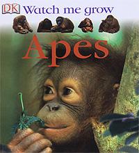 Watch Me Grow: Apes